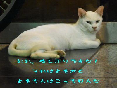 14_170813a.jpg