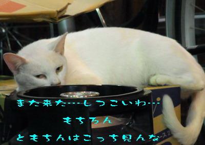 14_170813b.jpg