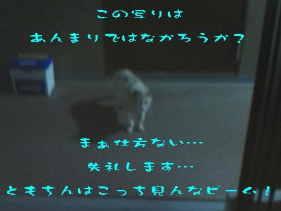 14_170903.jpg