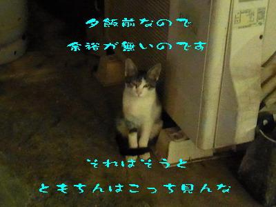 14_170914.jpg
