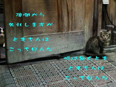 15_170911.jpg