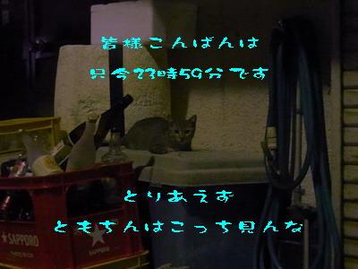 15_170912.jpg