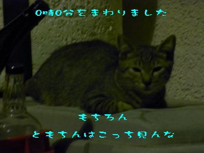 15_170913.jpg