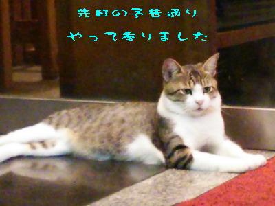 15_170920a.jpg