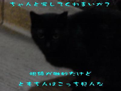 16_170723.jpg