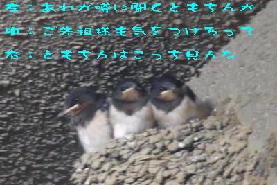 2014 170609.jpg